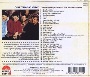 One Track Mind-The Garage Pop Sound Of