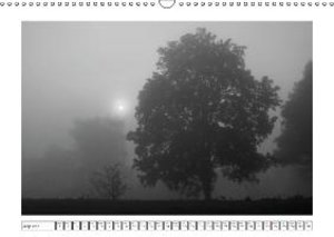 Fog in Black and White (Wall Calendar 2015 DIN A3 Landscape)