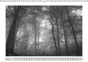 Fog in Black and White (Wall Calendar 2015 DIN A3 Landscape)