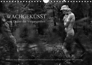 Wachgeküsst - Vom Zauber der Vergangenheit - Südwestkirchhof Sta