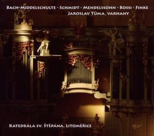 Orgelmusik Im Dom Von Leitmeritz