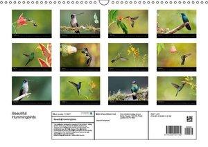 Beautiful Hummingbirds (Wall Calendar 2015 DIN A3 Landscape)