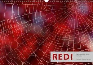 Herzog, T: Red! / UK-Version