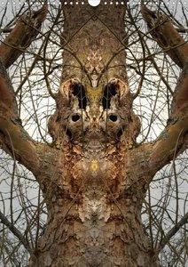 Spiegelwelten - mystische Orte (Posterbuch DIN A3 hoch)