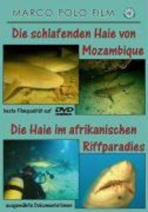Die schlafenden Haie von Mozambique/Die Haie im afrikanischen Ri