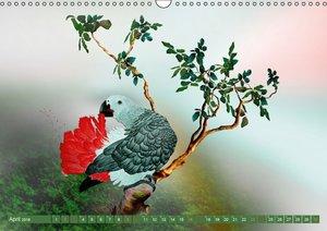 Papageien Zeichnungen (Wandkalender 2016 DIN A3 quer)