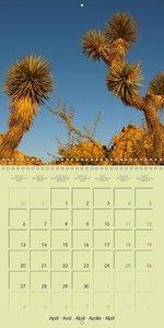 southwest of the USA (Wall Calendar 2015 300 × 300 mm Square)