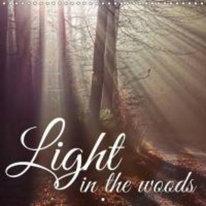 Light in the woods (Wall Calendar 2015 300 × 300 mm Square)