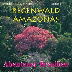 Regenwald Amazonas 1. Abenteuer Brasilien