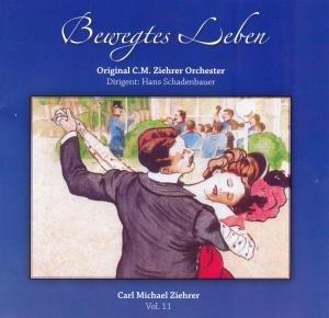 Schadenbauer, H: Bewegtes Leben