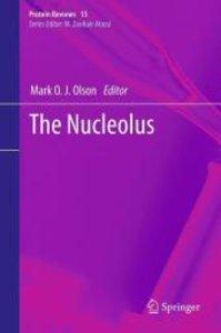 The Nucleolus
