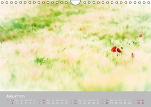 Poppy Love (Wall Calendar 2015 DIN A4 Landscape)