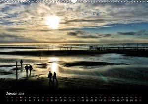 Wattlandschaften (Wandkalender 2016 DIN A3 quer)