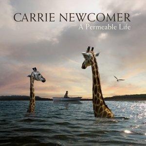 A Permeable Life (Vinyl)