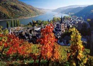 Weinreben am Rhein. Puzzle 1000 Teile