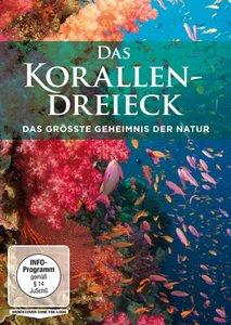 Das Korallendreieck - Das grösste Geheimnis der Natur