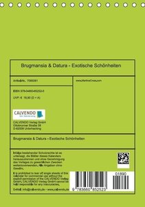Cross, M: Brugmansia & Datura - Exotische Schönheiten (Tisch
