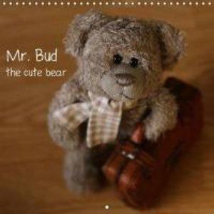 Mr. Bud, the cute bear (Wall Calendar 2015 300 × 300 mm Square)
