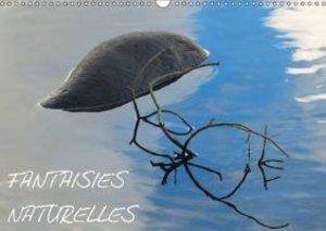 Fantaisies naturelles (Calendrier mural 2015 DIN A3 horizontal)