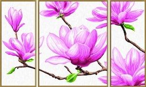 Schipper Malen nach Zahlen - Magnolien (Triptychon)