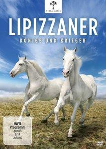 Lipizzaner-Könige Und Krieger