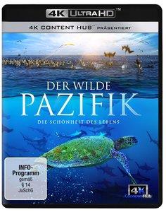Wilder Pazifik 4K UHD