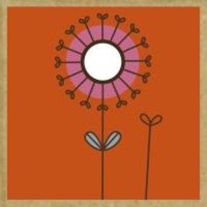 Green Gift Notes Blossoms Notecard Box