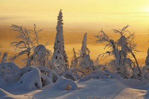 Frozen Planet-Eisige Welten-Komp.ungekürzte Serie