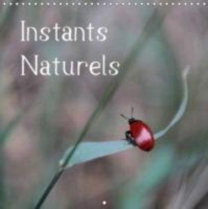 Instants Naturels (Calendrier mural 2015 300 × 300 mm Square)