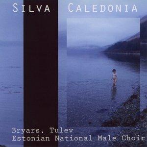 Silva Caledonia