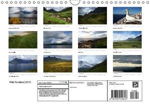 Wild Scotland 2015 (Wall Calendar 2015 DIN A4 Landscape)