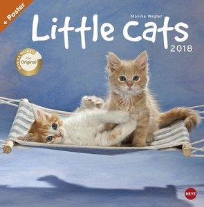 Little Cats Broschurkalender 2018