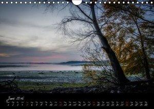 Lac du Der Lake Der (Wall Calendar 2016 DIN A4 Landscape)