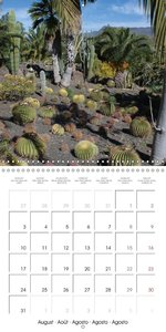 Fascination Cactuses (Wall Calendar 2015 300 × 300 mm Square)