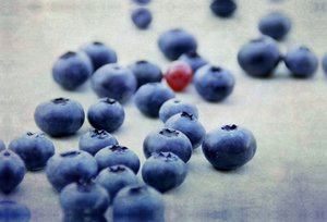 Premium Textil-Leinwand 90 cm x 60 cm quer Blaubeeren Fine Art