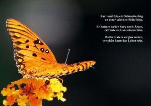 Schmetterlinge & Gedichte (Tischaufsteller DIN A5 quer)