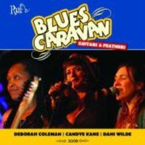 Blues Caravan 2008: Guitars & Feathers