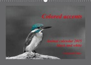 Di Chito, U: Colored Accents - Animal Calandar 2015 Black an