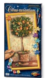 Schipper 609220398 - Citrus Aurantium/Orangenbäumchen, MNZ, Mal