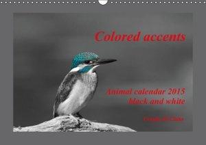 Di Chito, U: Colored Accents - Animal Calandar 2015 Black an