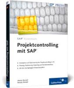 Projektcontrolling mit SAP
