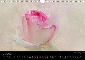 Blütenromantik (Wandkalender 2016 DIN A4 quer)