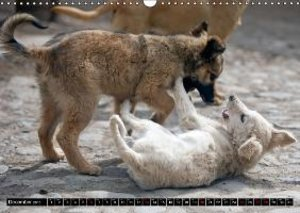 STREET DOGS / UK-Version (Wall Calendar 2015 DIN A3 Landscape)