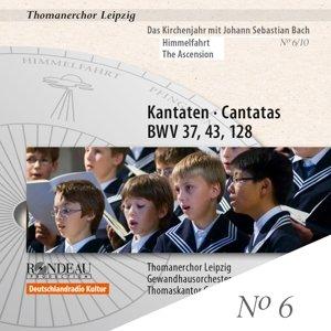 Kantaten BWV 37,43,128