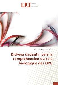 Dickeya dadantii: vers la compréhension du role biologique des O