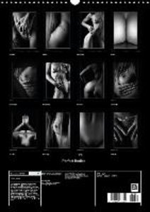 Perfect Bodies (Wall Calendar 2015 DIN A3 Portrait)
