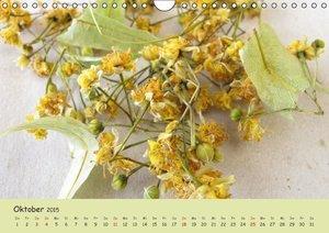 Rau, H: Mit Pflanzenkraft natürlich heilen (Wandkalender 201
