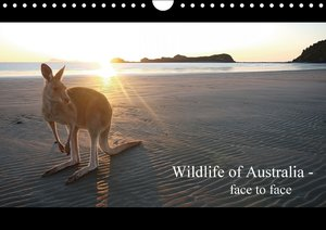 Wildlife of Australia - face to face / UK-Version (Wall Calendar