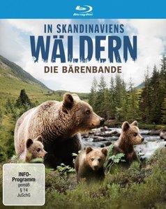 In Scandinaviens Wäldern-Bärenbande BD