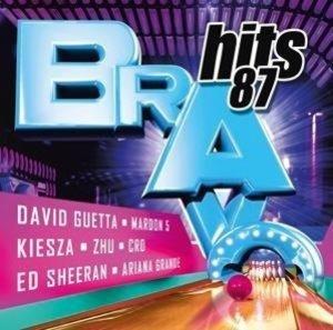Bravo Hits Vol.87